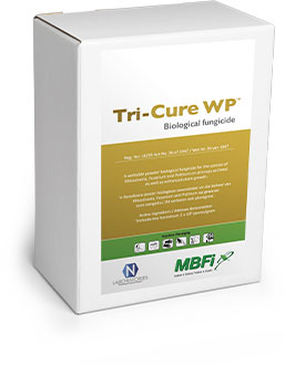 Tri-Cure WP